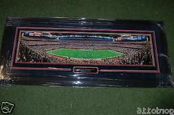 houston texans reliant stadium field large custom