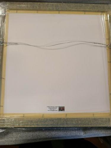 """3 CARD 8X10 16""""X16"""" TEXANS JJ WATT"""
